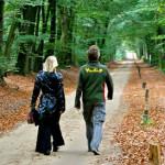 slide_wandelen_door_het_bos