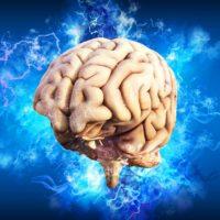 ADHD, diepe hersenstimulatie, hersenstimulatie, darmen hersenen, brein, erik scherder