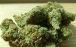 Cannabis verhoogt gevoeligheid voor valse herinneringen