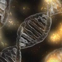 DNA-test, schizofrenie