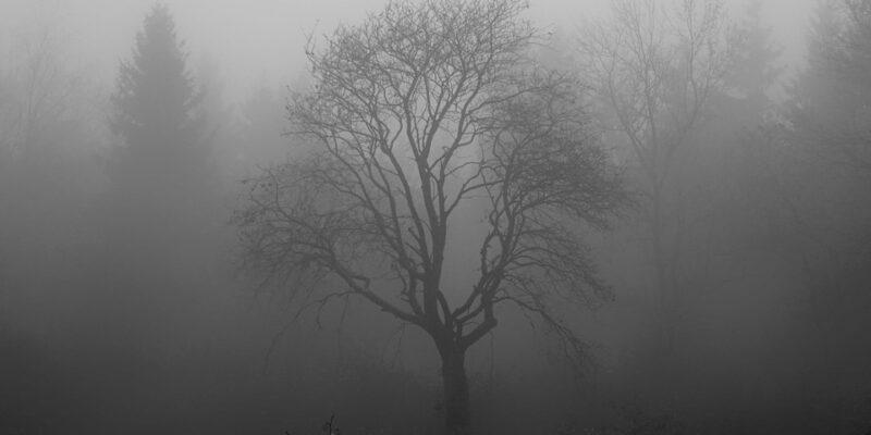 gerstdepressie, winterdip